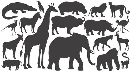 Zwarte silhouetten van Afrikaanse dieren op witte achtergrond instellen. Vector illustratie kunst. Olifant, giraf, buffel, nijlpaard, neushoorn, leeuw, cheeta, antilope, struisvogel, gorilla, krokodil, wrattenzwijn, zebra...