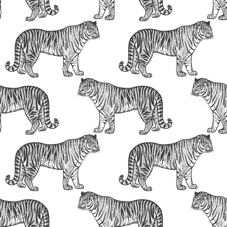 Tiger. Seamless pattern with animals of Africa. Hand drawing of wildlife. Vector illustration art. Black and white. Old engraving. Vintage. Design for fabrics, paper, textiles, fashion.