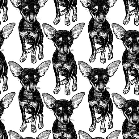 Seamless pattern with cute puppies. Home pets isolated on white background. Sketch. Vector illustration art. Realistic portraits of animal. Vintage. Black and white hand drawing of dogs terrier.