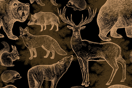 Forest animals and trees seamless pattern. Squirrel, deer, bear, wolf, fox, hedgehog, wild boar and spruce. Hand drawing. Gold and black. Vintage engraving background. Vector illustration art.