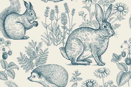 Bos dieren en planten naadloze patroon. Haas, egel, eekhoorn, bessen aardbei, bloemen lavendel en kamille. Handtekening. Wit en blauw. Vintage gravure. Vector illustratie.