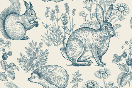 Forest animals and plants seamless pattern. Hare, hedgehog, squirrel, berries strawberry, flowers lavender and chamomile. Hand drawing. White and blue. Vintage engraving. Vector illustration.