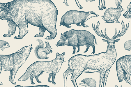 Forest animals seamless pattern. Deer, wolf, fox, boar, squirrel, bear, hare, hedgehog and badger. Hand drawing. Blue and white color. Vintage vector illustration. Zdjęcie Seryjne - 123200532