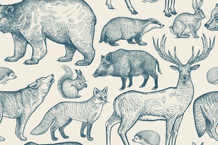 Reticolo senza giunte degli animali della foresta. Cervo, lupo, volpe, cinghiale, scoiattolo, orso, lepre, riccio e tasso. Disegno a mano. Colore blu e bianco. Illustrazione vettoriale d'epoca. Vettoriali
