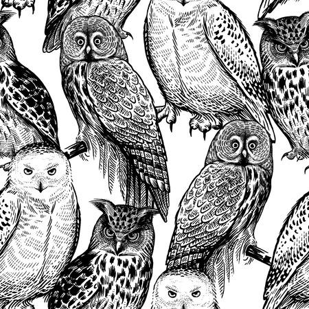 Modello senza cuciture con i gufi. Uccelli realistici. Illustrazione vettoriale. Uccelli predatori della foresta. Schizzo disegno a mano. Bianco e nero. Vintage ?. Modello per la progettazione di tessuti, carta, carta da parati. Vettoriali