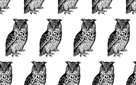 Naadloos patroon met uilen. Realistische vogels. Vector illustratie. Roofzuchtige bosvogels. Schets handtekening. Zwart en wit. Vintage. Sjabloon voor het ontwerp van textiel, papier, behang.