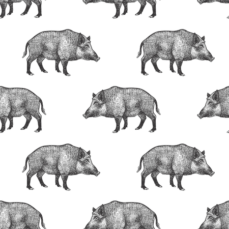 Boars. Seamless pattern with forest animals. Hand drawing of wildlife. Vector illustration art. Black and white. Old engraving. Vintage. Design for fabrics, paper, textiles, fashion.