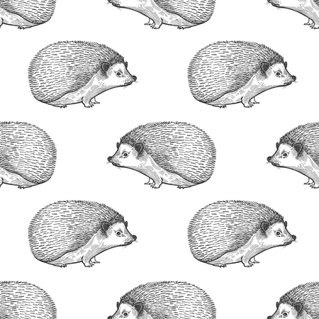 Hedgehog. Seamless pattern with forest animals. Hand drawing of wildlife. Vector illustration art. Black and white. Old engraving. Vintage. Design for fabrics, paper, textiles, fashion.