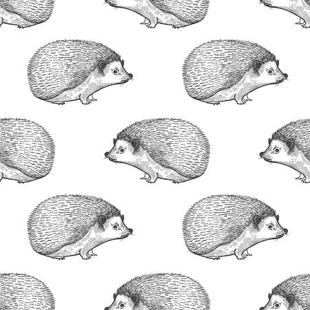 Igel. Nahtloses Muster mit Waldtieren. Handzeichnung von Wildtieren. Vektorillustrationskunst. Schwarz und weiß. Alte Gravur. Jahrgang. Design für Stoffe, Papier, Textilien, Mode.
