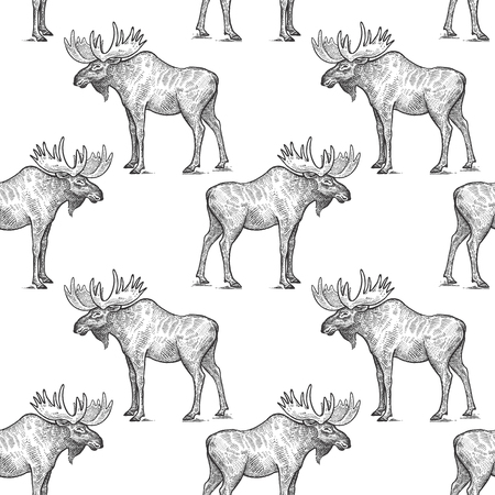 Elk or moose. Seamless pattern with forest animals. Hand drawing of wildlife. Vector illustration art. Black and white. Old engraving. Vintage. Design for fabrics, paper, Иллюстрация