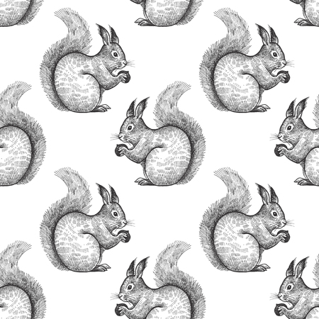Squirrel. Seamless pattern with forest animals. Hand drawing of wildlife. Vector illustration art. Black and white. Old engraving. Vintage. Design for fabrics, paper, textiles, fashion.