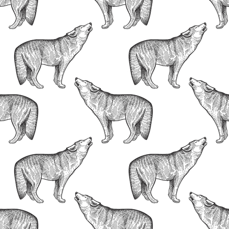 Wolf. Seamless pattern with forest animals. Hand drawing of wildlife. Vector illustration art. Black and white. Old engraving. Vintage. Design for fabrics, paper, textiles, fashion.