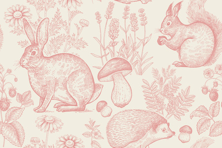 Forest animals and plants seamless pattern. Hare, hedgehog, squirrel, berries strawberry, flowers lavender, chamomile and mushrooms. Hand drawing. White and red. Vintage engraving. Vector illustration. 일러스트
