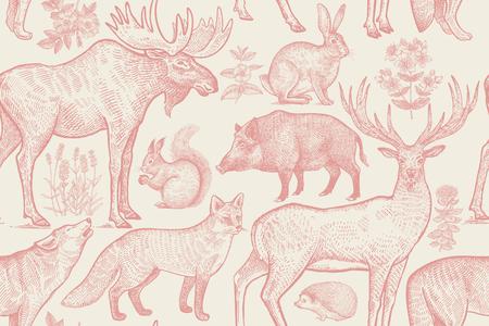 Forest animals and plants seamless pattern. Deer, wolf, fox, boar, elk, hare, hedgehog, squirrel, lavender flowers, dog rose and St. Johns Wort. Hand drawing. Pink, white. Vintage vector illustration.
