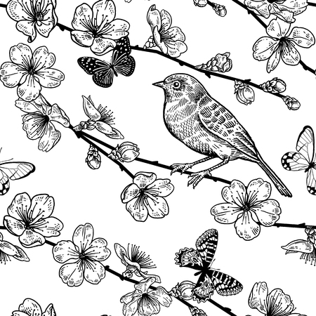 Seamless pattern with Japanese cherry, bird and butterflies. Illustration of spring nature. Vector sketch. Black and white. Vintage. Archivio Fotografico - 122825648