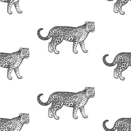 Jaguar. Nahtloses Muster mit Tieren Südamerika. Handzeichnung von Wildtieren. Vektorillustrationskunst. Schwarz und weiß. Alte Gravur. Jahrgang. Design für Stoffe, Papier, Textilien, Mode.