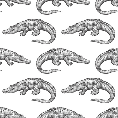 Caiman. Seamless pattern with animals South America. Hand drawing of wildlife. Vector illustration art. Black and white. Old engraving. Vintage. Design for fabrics, paper, textiles, fashion.