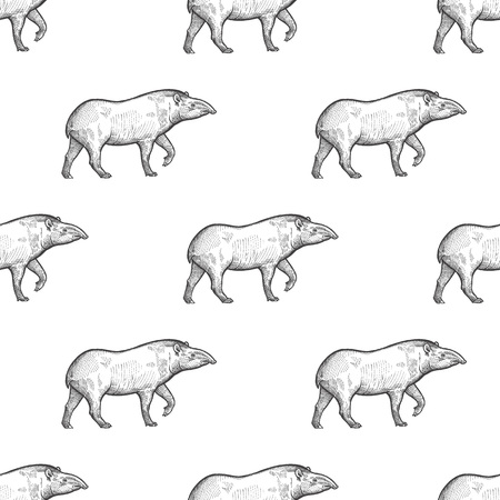 Tapir. Seamless pattern with animals South America. Hand drawing of wildlife. Vector illustration art. Black and white. Old engraving. Vintage. Design for fabrics, paper, textiles, fashion. Иллюстрация