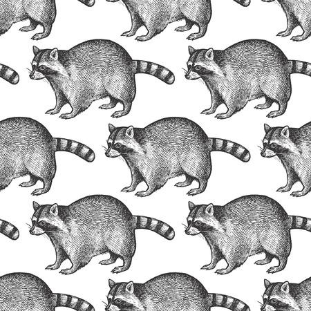 Patrón sin fisuras con animales Mapache de América del Norte. Dibujo de la vida silvestre a mano. Arte de ilustración vectorial. En blanco y negro. Vintage. Diseño para tejidos, papel, textiles, moda.