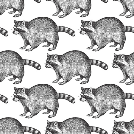 Seamless pattern with animals North America Raccoon. Hand drawing of wildlife. Vector illustration art. Black and white. Vintage. Design for fabrics, paper, textiles, fashion.