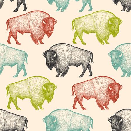Modello senza cuciture con animali Nord America Bison. Disegno a mano della fauna selvatica. Arte di illustrazione vettoriale. Colore nero, bianco, verde, blu e rosso. Vintage ?. Design per tessuti, carta, tessuti, moda. Vettoriali