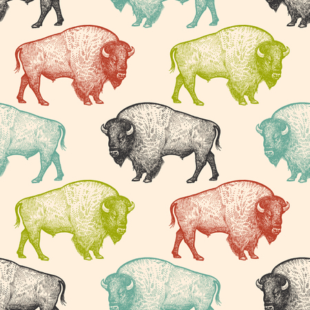 Seamless pattern with animals North America Bison. Hand drawing of wildlife. Vector illustration art. Black, white, green, blue and red color. Vintage. Design for fabrics, paper, textiles, fashion. Ilustração
