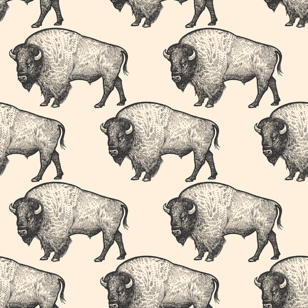 Seamless pattern with animals North America Bison. Hand drawing of wildlife. Vector illustration art. Black and white sketch. Vintage engraving. Design for fabrics, paper, textiles, fashion. Ilustração