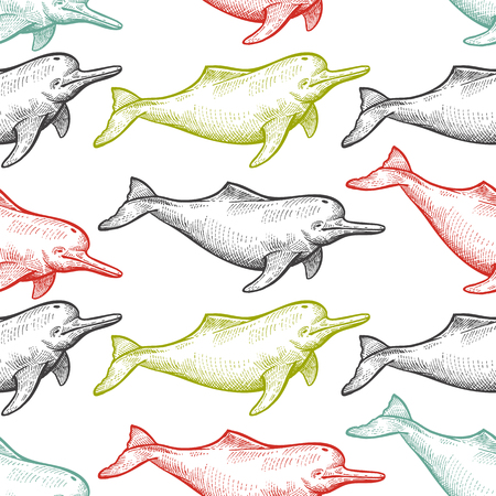Seamless pattern with animals South America river dolphin. Hand drawing of wildlife. Vector illustration art. Black, white, green, blue and red. Vintage. Design for fabrics, paper, textiles, fashion.