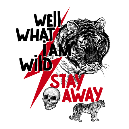 """Muzzle of tiger, skull, figure of tiger in profile and inscription """"Well what I am wild stay away"""". Template for printing on T-shirts, posters, cards. Black, white and red color. Realistic sketch."""