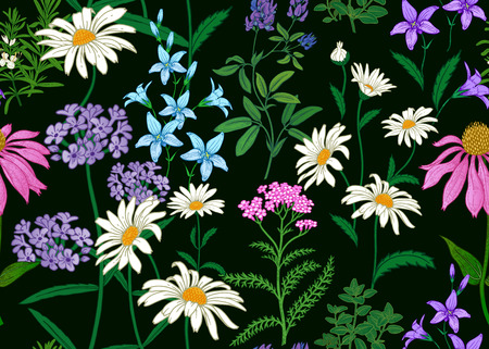 Seamless summer pattern. Wild flowers chamomile, herbs, bells. Floral decoration for printing on wallpaper, paper, textiles, fabrics. Hand drawing sketch. Fashion illustration. Black background.