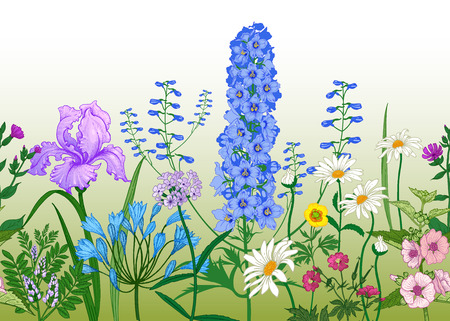BorderÊwith Wild flowers. Seamless summer pattern with field and garden flowers. Floral background for printing wallpaper, paper, textiles, fabrics. Hand drawing sketch. Fashion vector illustration. Illustration
