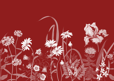 BorderÊwith Wild flowers. Seamless summer pattern with field flowers. Floral background for printing wallpaper, paper, textiles, fabrics. Hand drawing sketch. Fashion illustration. Red and white