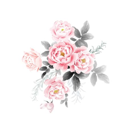 A bouquet of garden roses. Watercolor illustration Flowers and leaves. Pink and black on a white background. Flower decoration. Template for wedding and greeting cards.