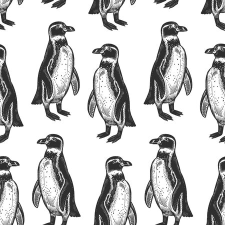 Seamless pattern. Waterfowl birds African Spectacled penguins. Vector illustration. Black ink on white background. Wild life. Natural motive of nature. Paper, wallpaper, textiles, ornamental covering.  イラスト・ベクター素材