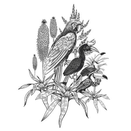Black and white floral pattern. Tropical bird parrot and toucans, leaves and flowers isolated on white background. Vector illustration. Vintage engraving. For printing on T-shirts, pillows, scarves.  イラスト・ベクター素材