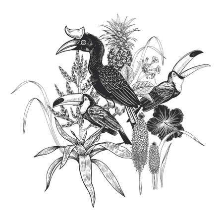 Black and white floral pattern. Tropical birds toucans, leaves, pineapple, flowers hibiscus isolated on white background. Vector illustration. Vintage engraving. For print on T-shirts, pillows, scarf.