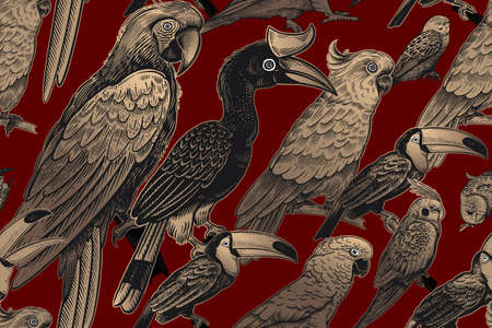 Luxury tropical pattern. Exotic birds parrots and toucans. Gold foil print and black on red background. Animal pattern. Wild world.  イラスト・ベクター素材