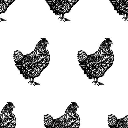 Seamless pattern. Chicken images. Decorative background with hens. Domestic bird. Farm animals series. Vector illustration of poultry. Black and white graphics. Vintage sketch.