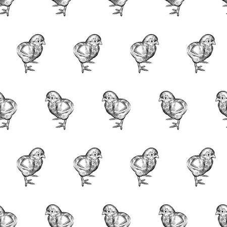 Seamless pattern. Little cute Chickens. Decorative background. Domestic bird. Farm animals series. Vector illustration of poultry. Black and white graphics. Vintage sketch.  イラスト・ベクター素材