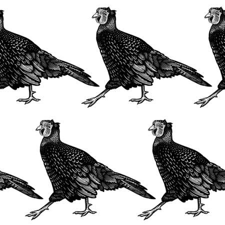 Seamless pattern. Decorative background with pheasants. Domestic bird. Farm animals series. Vector illustration of poultry. Black and white graphics. Vintage sketch.