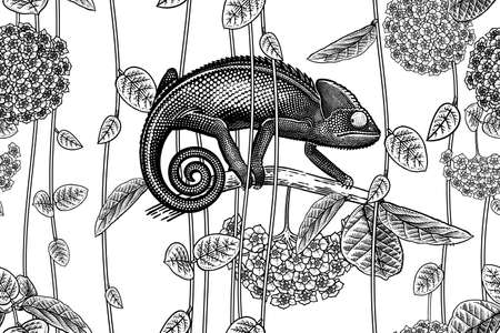 Floral seamless pattern. Exotic Tropical Flowers, Vines, Leaves and Chameleon. Black and white. Vector illustration. Vintage. Template for paper, wallpaper, textiles.