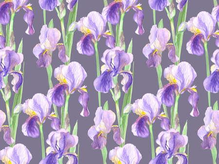 seamless pattern of iris flowers painted in watercolor