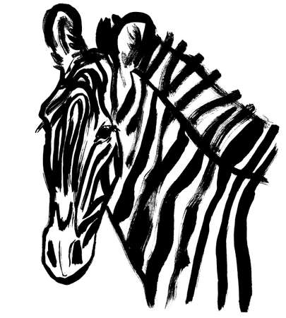 zebra head close drawn with black paint on a white background