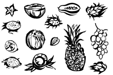set of tropical fruits drawn in black paint on a white background 版權商用圖片