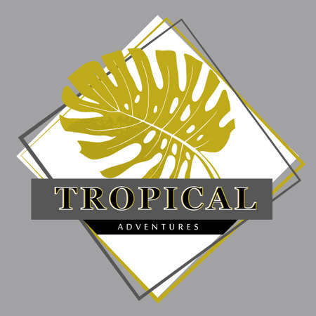 tropical poster with monstera leaf in rhombus and inscription tropical adventures in monochrome