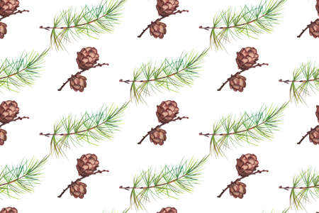 winter seamless print with larch cones and branches with needles on a white background