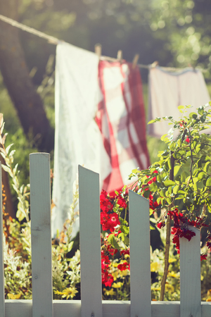 picket: White picket fence and fresh laundry in a garden Stock Photo