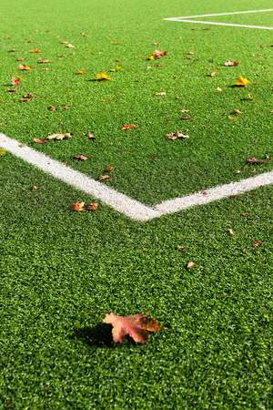 Football field detail, grass and white corner lines and some fallen leaves in autumnal colors