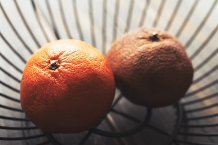 Two oranges in metal bowl, one ripe and one old and brown Stock Photo - 105940110