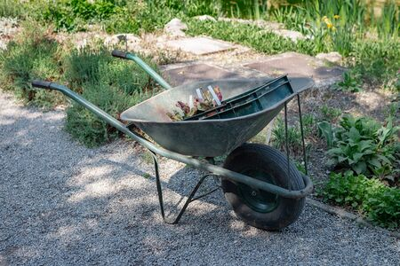 Wheelbarrow with some gardening stuff in a garden on a sunny day